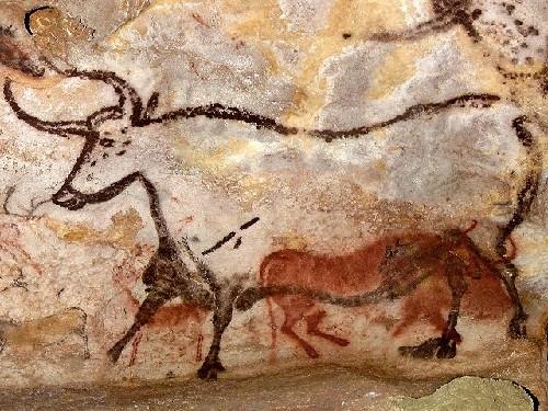 prehistoire_aurochs-peinture